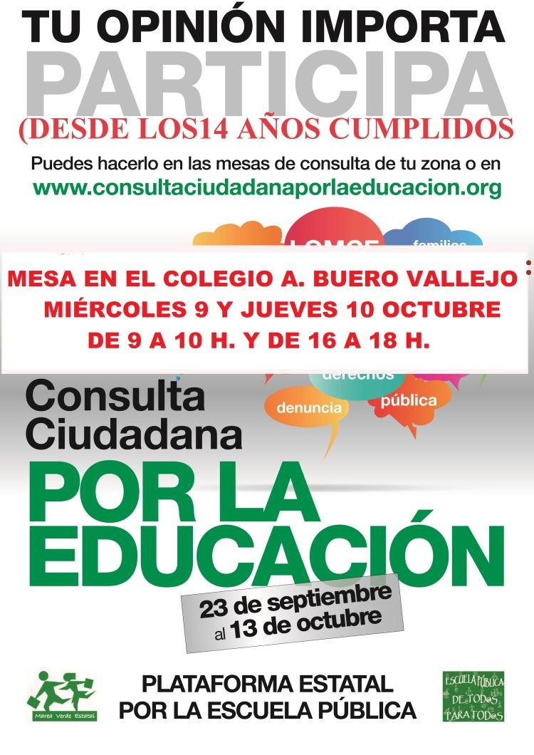 Cartel Consulta Ciudadana1  copia BUERO